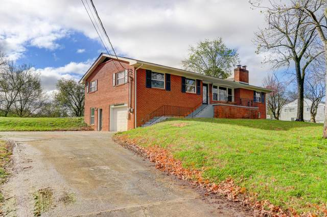 1204 Britton Drive, Knoxville, TN 37912 (#1112494) :: Catrina Foster Group
