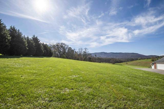 Green Pasture Lane, Sevierville, TN 37876 (#1112525) :: The Terrell Team