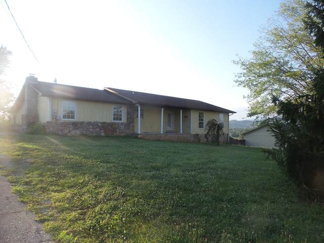 116 Golden Rod Drive, Seymour, TN 37865 (#1112528) :: Catrina Foster Group