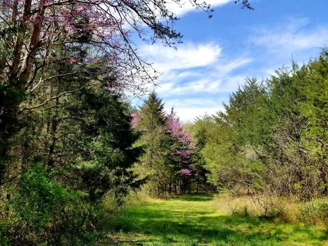 Lick Creek, Tellico Plains, TN 37385 (#1112544) :: Catrina Foster Group