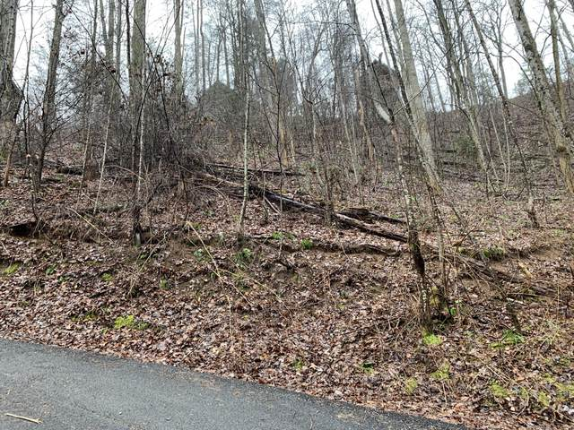 Lot 335a Lamons Loop, Sevierville, TN 37876 (#1112616) :: Shannon Foster Boline Group