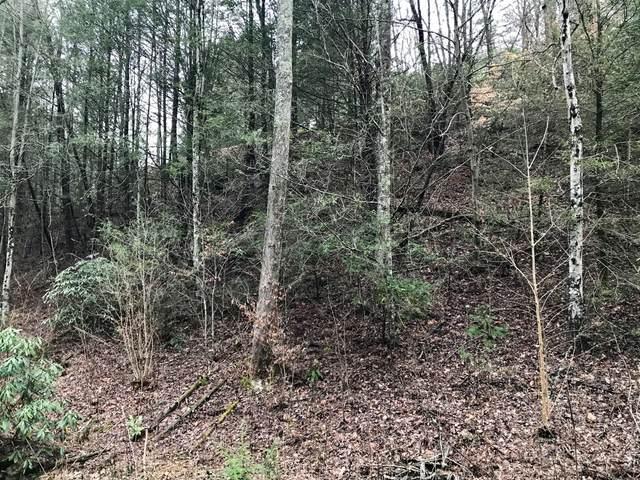 Butler Branch Rd, Gatlinburg, TN 37738 (#1112630) :: Tennessee Elite Realty