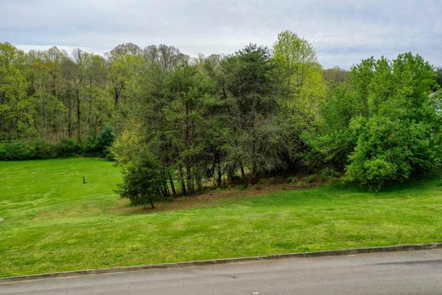 1643 Pendleton Drive, Friendsville, TN 37737 (#1112744) :: The Cook Team
