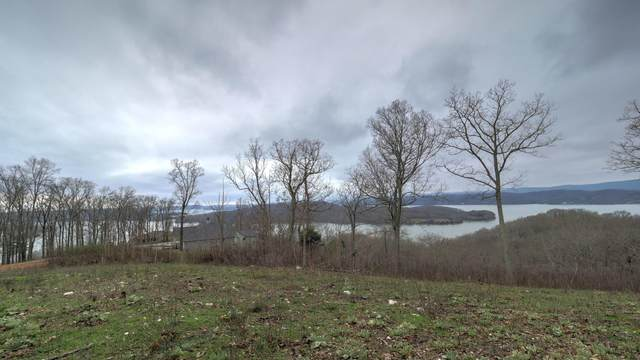 536 Grande Vista Drive, Rockwood, TN 37854 (#1112788) :: Tennessee Elite Realty