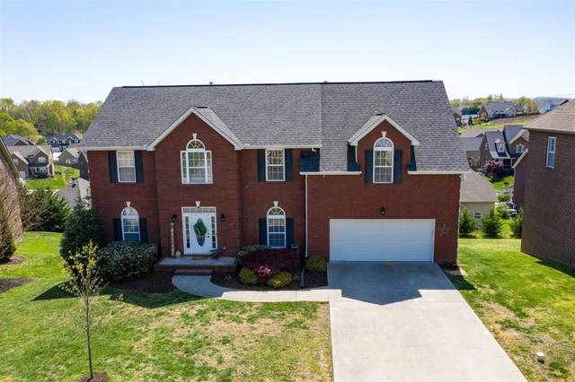 8420 Harbor Cove Drive, Knoxville, TN 37938 (#1112839) :: The Sands Group