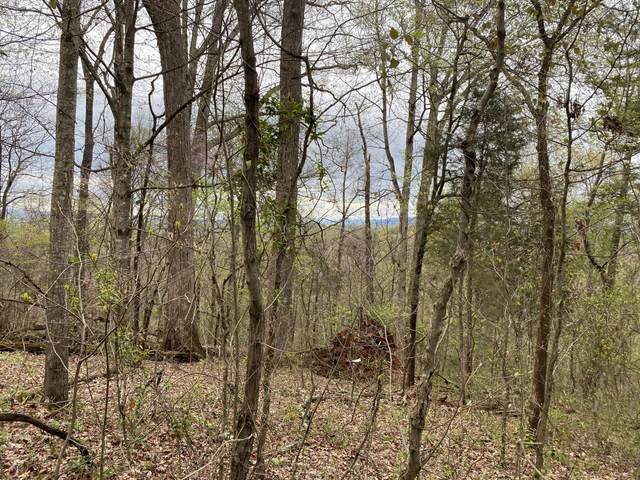 Lot 2 Overview/Nature Way, Newport, TN 37821 (#1112864) :: The Cook Team