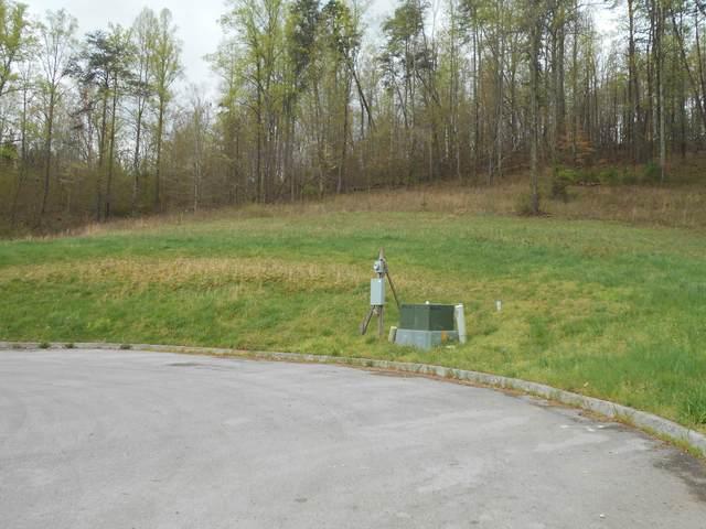 Briar Ridge Lane, Strawberry Plains, TN 37871 (#1112869) :: Billy Houston Group