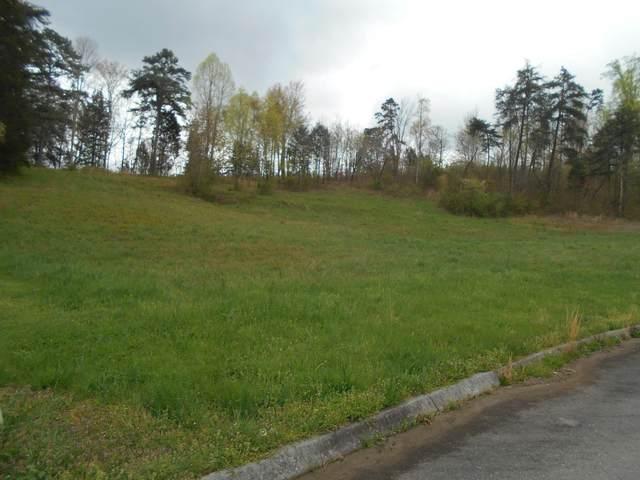 Briar Ridge Lane, Strawberry Plains, TN 37871 (#1112870) :: Billy Houston Group