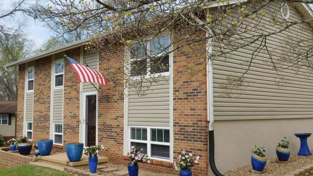 7805 Serena Circle, Knoxville, TN 37919 (#1112878) :: Billy Houston Group