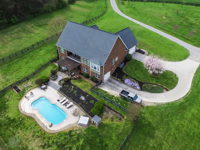 814 E Copeland Drive, Powell, TN 37849 (#1112946) :: Billy Houston Group