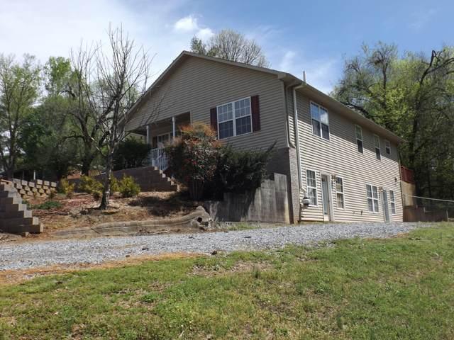 1840 Nandina Drive, Maryville, TN 37801 (#1113028) :: Billy Houston Group