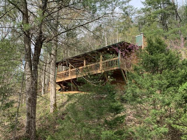 130 Fox Chase Drive, Townsend, TN 37882 (#1113037) :: Billy Houston Group