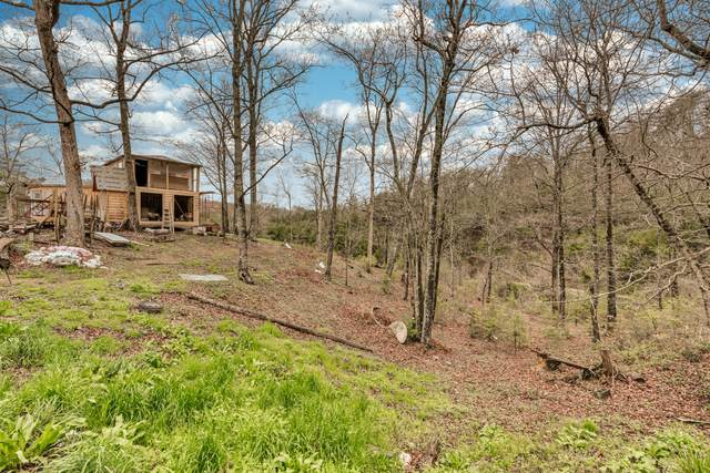 2208 Little Valley Rd, Sevierville, TN 37862 (#1113052) :: Billy Houston Group
