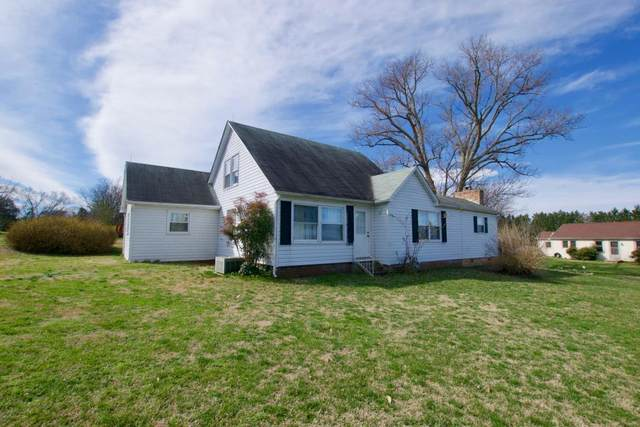 801 Bert Garner Lane, Maryville, TN 37803 (#1113059) :: Billy Houston Group