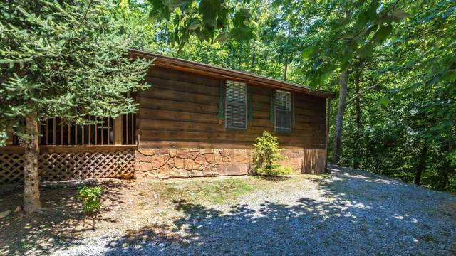 1513 School House Gap Rd, Sevierville, TN 37876 (#1113185) :: Billy Houston Group