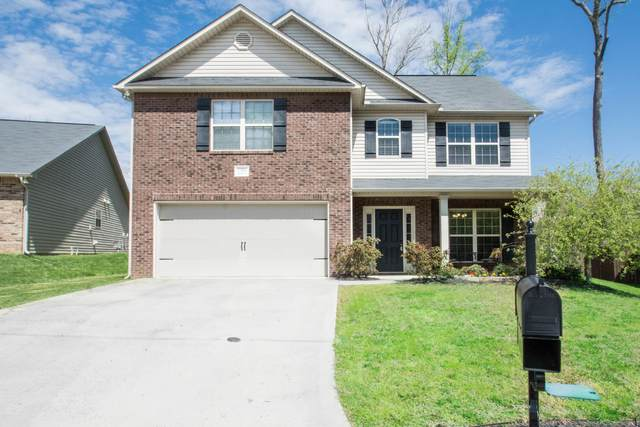 11604 Edison Drive, Knoxville, TN 37932 (#1113211) :: Billy Houston Group