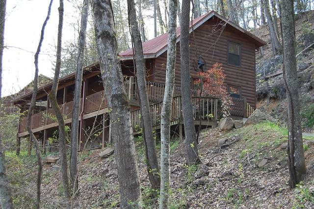 360 Sugar Mtn Way, Pigeon Forge, TN 37863 (#1113375) :: Billy Houston Group
