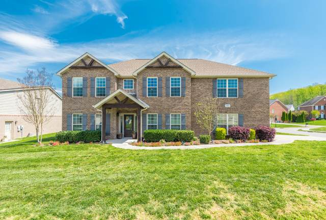 1801 Falcon Pointe Drive, Knoxville, TN 37922 (#1113386) :: Billy Houston Group