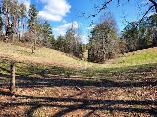 Old Piney Rd, Maryville, TN 37803 (#1113430) :: Adam Wilson Realty