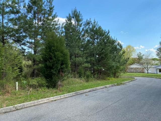 Lot #11 Waterview Drive, Spring City, TN 37381 (#1113499) :: Adam Wilson Realty