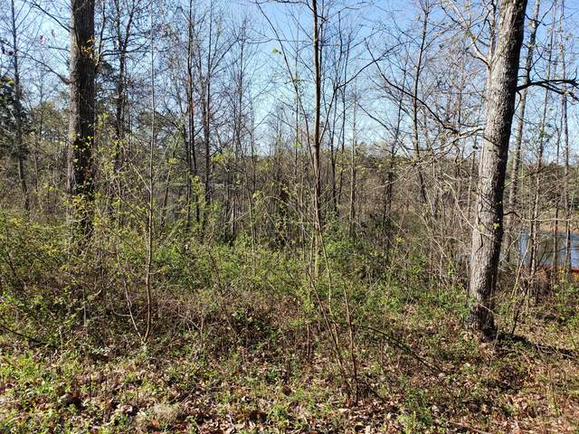 Lot 41 Cherokee Cove, Rutledge, TN 37861 (#1113658) :: Billy Houston Group