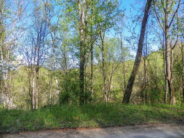 Lot# 33 Sourwood Way, Sevierville, TN 37862 (#1113797) :: The Terrell Team