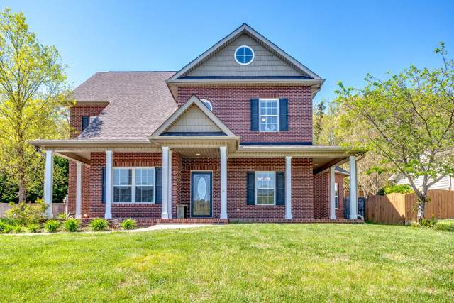 1151 Paxton Drive, Knoxville, TN 37918 (#1114132) :: Exit Real Estate Professionals Network