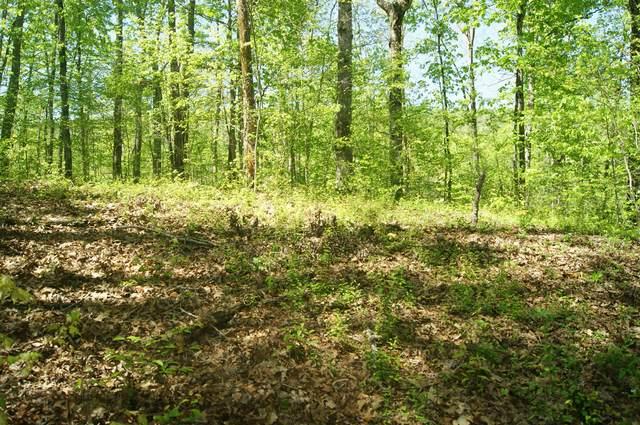 1432 Reagan Valley Rd, Tellico Plains, TN 37385 (#1114363) :: Tennessee Elite Realty