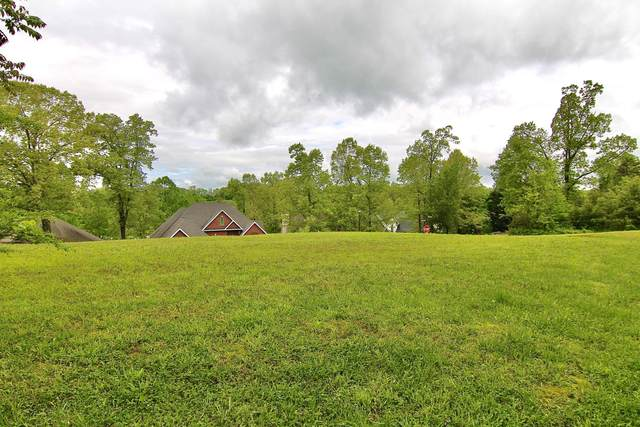 1820 Crazy Horse Drive Drive, Maryville, TN 37801 (#1114804) :: Realty Executives Associates