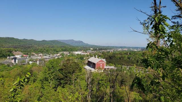 Lots 9,10,13-16 Laurelwood Dr, Pigeon Forge, TN 37863 (#1114813) :: Shannon Foster Boline Group