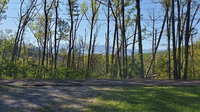 Lots 13,14,15,16 Laurelwood Dr, Pigeon Forge, TN 37863 (#1114820) :: Shannon Foster Boline Group