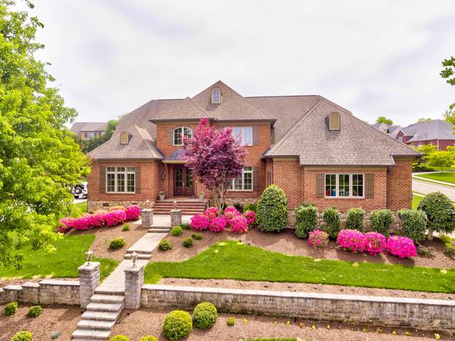 12000 Mallard Bay Drive, Knoxville, TN 37922 (#1114866) :: Billy Houston Group