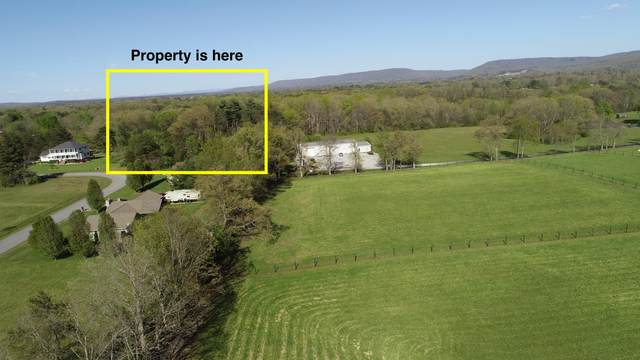 Hinch Mtn View Rd, Crossville, TN 38555 (#1115123) :: Billy Houston Group
