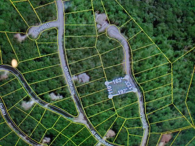 21 Byron Lane, Fairfield Glade, TN 38558 (#1115204) :: Catrina Foster Group