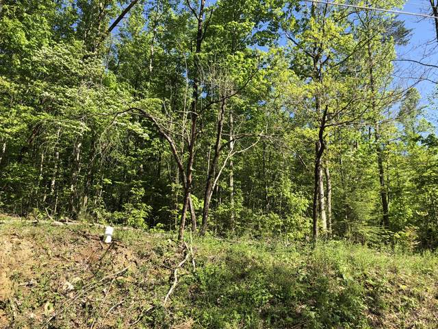 Lot 19 Black Oak Drive, Sevierville, TN 37876 (#1115220) :: Catrina Foster Group