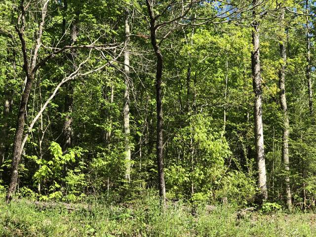 Lot 59 Alpine Drive, Sevierville, TN 37876 (#1115229) :: The Terrell Team