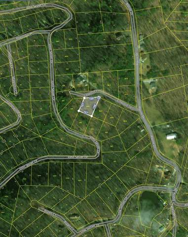 Lot 20 Linwood Court, Sevierville, TN 37876 (#1115271) :: Tennessee Elite Realty
