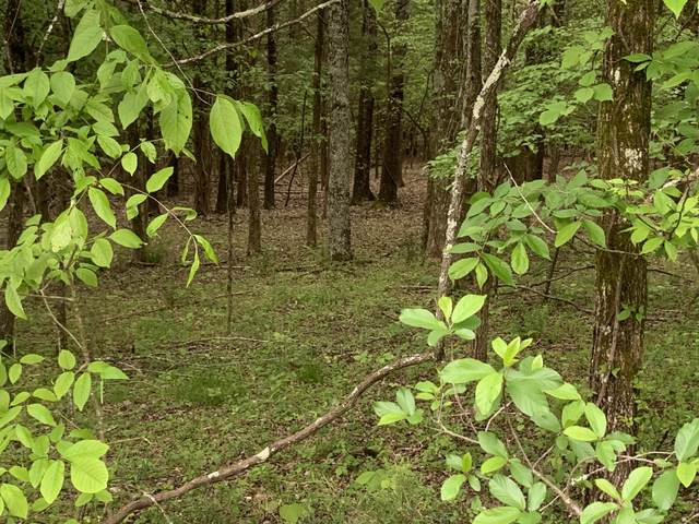Lot 1058 Mountain View Lane, Baneberry, TN 37890 (#1115492) :: Tennessee Elite Realty