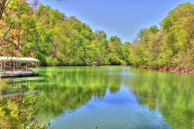 Lot 18 Emerald Cove Way, Maynardville, TN 37807 (#1115638) :: The Cook Team