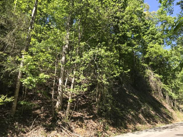 Stepping Stone Dr., Sevierville, TN 37862 (#1115742) :: Tennessee Elite Realty
