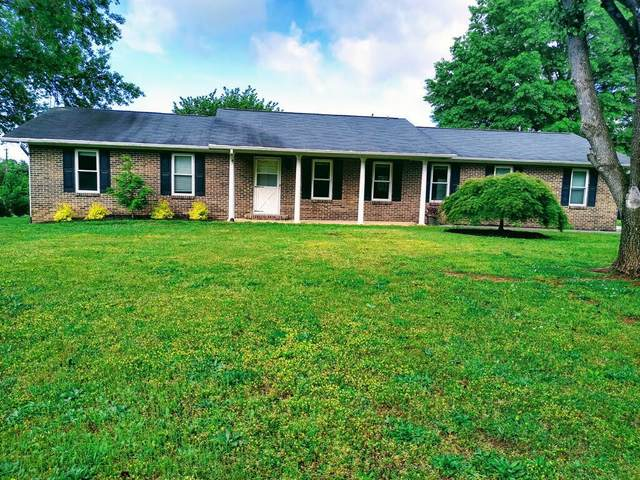 224 Northview Drive, Lenoir City, TN 37771 (#1115772) :: Billy Houston Group