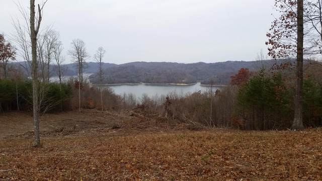 Lot 35 Hickory Pointe, Maynardville, TN 37807 (#1115928) :: Shannon Foster Boline Group