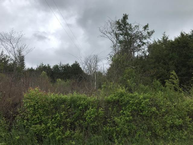 Lot 10 Fred Marshall Rd, Russellville, TN 37860 (#1116138) :: Venture Real Estate Services, Inc.