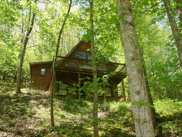 Address Not Published, Sevierville, TN 37876 (#1116145) :: Realty Executives