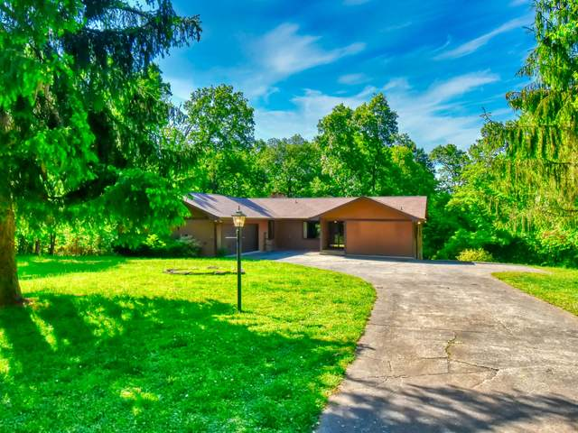 158 Rendezvous Rd, Rockwood, TN 37854 (#1116282) :: Realty Executives