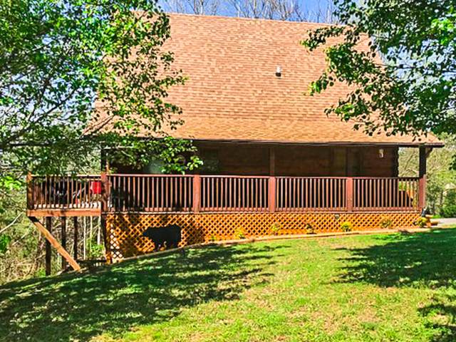 505 Royal Coachman Drive, Pigeon Forge, TN 37863 (#1116345) :: Shannon Foster Boline Group