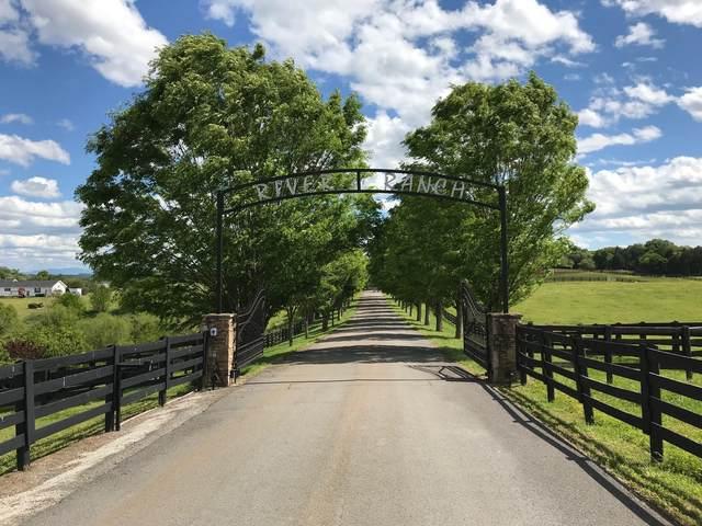 Lot 66 River Drive, Blaine, TN 37709 (#1116565) :: Venture Real Estate Services, Inc.