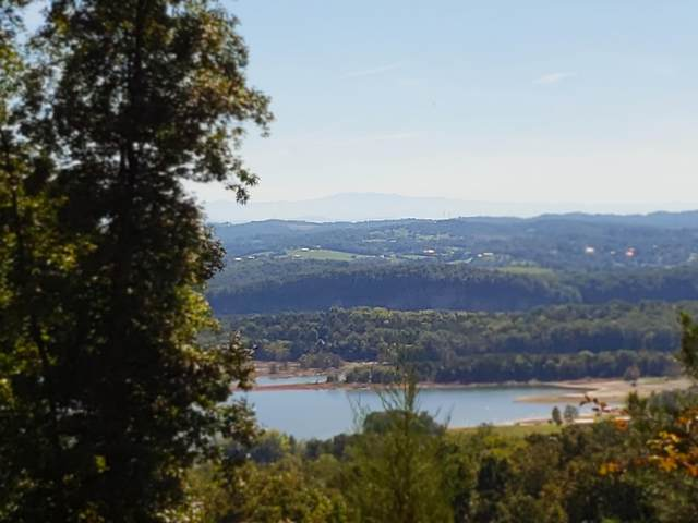 Lot 217 Pinnacle Point, Mooresburg, TN 37811 (#1116684) :: The Sands Group
