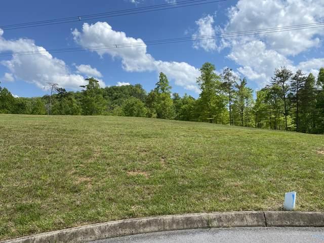 9008 Thunder Bay Way Way, Knoxville, TN 37938 (#1116851) :: Billy Houston Group