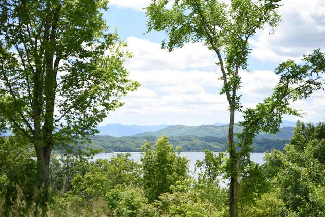 Lot 5 Waterford Way, Newport, TN 37821 (#1116969) :: Realty Executives